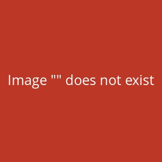 Japico-Sample-book 6.15, The japico-Sample-book 6.15 containes samples for restoration papers 1,6 up till 30 g/sqm